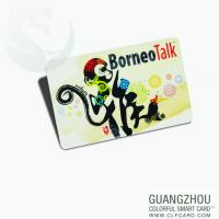 Cartoon vip pvc card/plastic gift card with high quality Manufactures