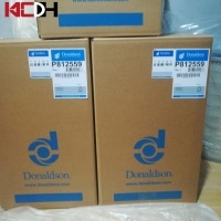 China P812559 8421230000 Donaldson Air Filter For Excavator on sale