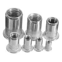 Zinc Plated Carbon Steel Blue White Knurled Body Rivet Nut Flat Head Threaded Insert Nutsert Manufactures