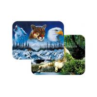 Waterproof Plastice 3D Lenticular Placemats Directly Printing PET Manufactures