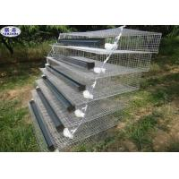 A Type Quail Battery Cages 6 Tiers Two Sides 800 Quails Capacity Manufactures