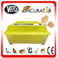 China Automatic 48 Egg Incubator/48 Eggs Mini Incubator/48 Chicken Egg Incubator on sale