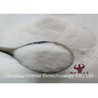 Analgesic Powder Benzocaine HCl / Benzocaine Hydrochloride Local Anesthetic CAS 23239-88-5 Manufactures