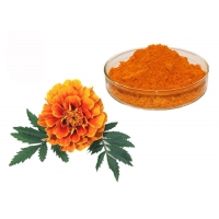 China Natural Pigment Xanthophyll Marigold Flower Herbal Extract Powder on sale