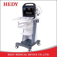 China HEDY China 2D 3D 4D Portable Color Ultrasound Machine Price Scanner on sale