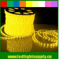 China led light stage curtain 1/2'' 2 wire rope light with low voltage 12/24v on sale