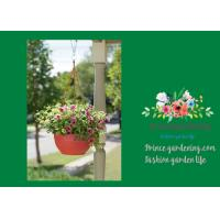 Self Watering Hanging Flower Baskets / Hanging Baskets For Plants Manufactures