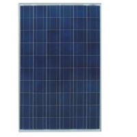 Polycrystalline Solar Panel (HY-P300) Manufactures