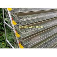 Commercial Auto Water Laying Bird Egg Quail Farm Cage , Wire Quail Cages Manufactures