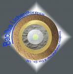 200BI Bacillus Licheniformis Powder Feed Grade Probiotics for Livestock / Poultry SEM-BL200BI Manufactures