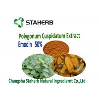Polygonum Cuspidatum Root Extract Phytogenic Feed Additives Veterinary Manufactures