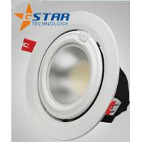 Silver 8 inch Led Recessed Ceiling Downlights COB 20W High Luminous Manufactures