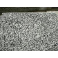 China Guangdong Silver Grey Granite Tiles Sea Wave Flower Granite Floor Tiles Granite Slabs on sale