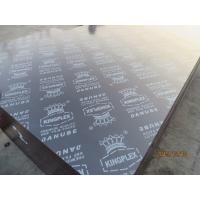 China KINGPLEX' BROWN FILM FACED PLYWOOD, COMBI CORE, WBP PHENOLIC GLUE, IMPORTED BROWN FILM on sale