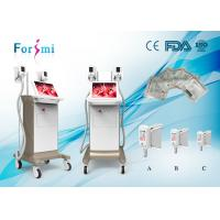 China Hot sale lower temperature freezing fat cell slimming machine for medical spa owner on sale