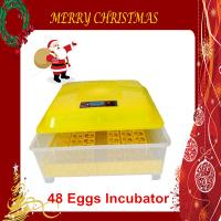 Christmas Promotion Price Durable Quail Eggs Incubator Fully Automatic 48 Egg CE Marked Manufactures