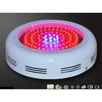 Long Life 90W 3650 Lm 60 Hz Indoor LED Plant Grow Lights for Hydroponics, Horticulture Manufactures