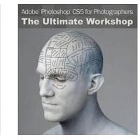 Quality Adobe Photoshop CS6 Design Standard software for Windows for sale