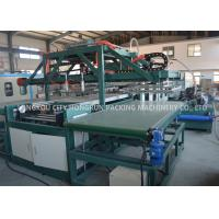 Large Capacity EPS Disposable Food Containers Machine With PLC Control Manufactures