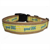 Quality Lime Nylon Collar for sale