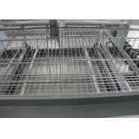 China Automatic Baby Chick Cage System 180 Birds Capacity 15-20 Years Lifespan for sale