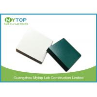 Epoxy Resin Worktop For Fume Hood , Strong Chemical Epoxy Resin Work Surface Manufactures