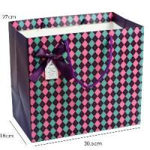 Custom Printed Paper Shopping Bag (ST-BG-36) Manufactures