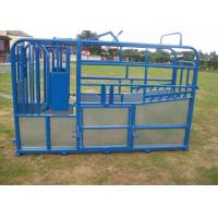 Quality UK Standard complied Cattle Crush for sale