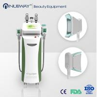 5 Handpieces cold lipolysis criolipolisis 2017 body weight loss sculpting slimming freeze fat cryolipolysis machine for