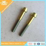 Gold Anodized Gr5 Titanium Allen Head Screws Manufactures