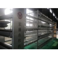 High Tech Feeding Chicken Farm Poultry Equipment Q235 Low Carbon Steel Wire Material Manufactures
