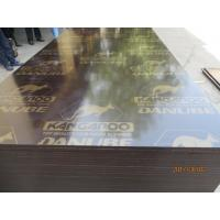 Buy cheap KANGAROO BRAND FILM FACED PLYWOOD, POPLAR CORE, WBP MELAMINE GLUE,Formwork concrete film faced shuttering marine plywood from wholesalers