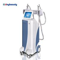 Body Shaper Cryolipolysis Slimming Machine Weight Loss With Membranes