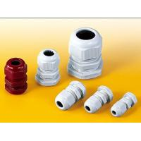 PG-Length Nylon Cable Glands Manufactures