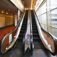 Escalator, Equipped with Helical Gear Driven Horizontal Host and Powerful Conveying Capacity Manufactures