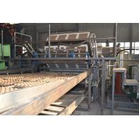 Full Automatic Waste Egg Tray Machine / Egg Pack Box Maker With Aluminum Molds Manufactures