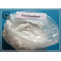 Tren E / Trenbolone Enanthate for Strength Boosting and Increasing Lean Muscle Mass Manufactures