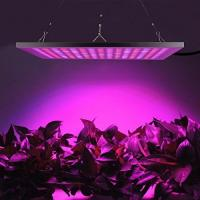 Aluminium Full Spectrum LED Grow Lights 45 W For Vegetable , 2 Years Warranty Manufactures