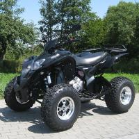 High Speed Utility Vehicles ATV 250cc Extra Large CDI Electric Start System / Manual Clutch Manufactures