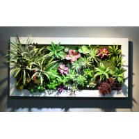 Metal Frame Wall Mounted Plastic Succulent Plants Arrangement Hanging Art for Livingroom Manufactures