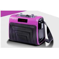 Rechargeable Battery Plastic PA Speaker Box With Leather Shoulder Strap Manufactures