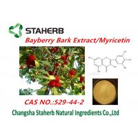 Health supplement Pure Natural Plant Extracts bayberry bark extract of myricetin powder Manufactures