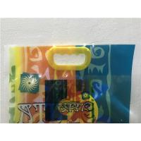 Color Printing Flexible Packaging Bags , Stand Up Pouch Bags With Hand Hole Manufactures