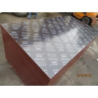 KINGPLEX BRAND FILM FACED PLYWOOD, COMBI CORE, WBP PHENOLIC GLUE, IMPORTED BROWN FILM Manufactures
