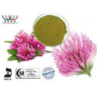 Red Clover Organic Herbal Extracts , Red Clover Leaf Extract Modulate Lipid Metabolism