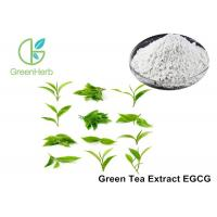 EGCG Green Tea Extract Anti - Tumor Effect For Pharmaceutical Industries Manufactures
