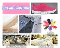 China PA Hot Melt Adhesive Web Film (double side adhesive) Manufacturer In China on sale