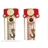 Spark Free Lifting Chain Hoist With Trolleys By Copper Beryllium Manufactures