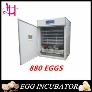 Electric heated constant temperature incubator 880 eggs incubator  LH-7 Manufactures