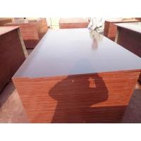 China Construction 18mm Shuttering Film Faced Plywood Prices on sale